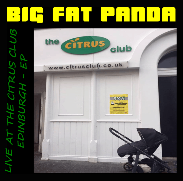 live ska band big fat panda citrus club